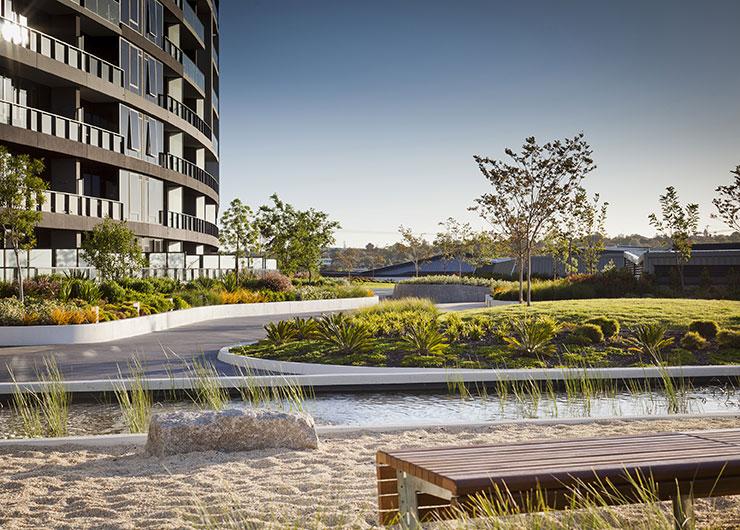 MDG Landscape Architecture